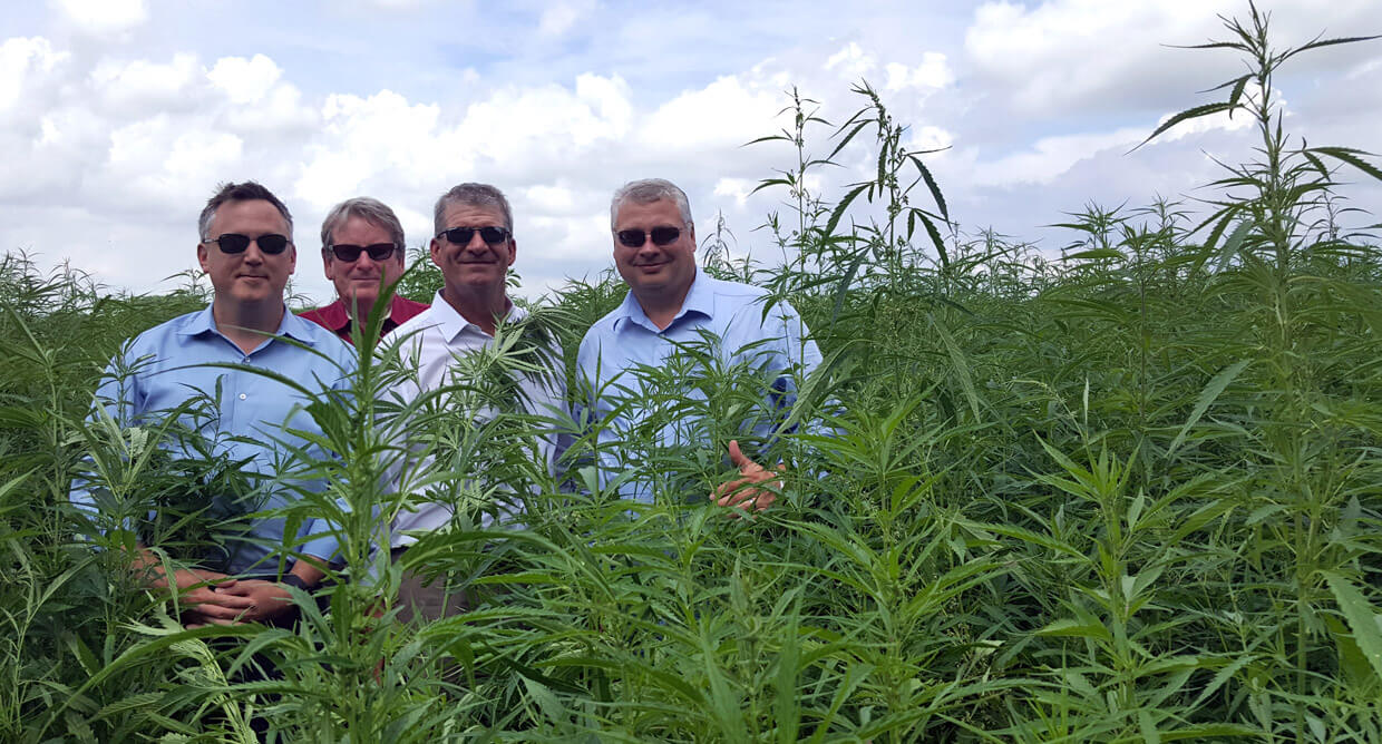 Tree of Life Seeds Team, in Cannabis Field