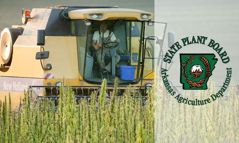 Tree Of Life Seeds - New Release - ARKANSAS PLANT BOARD ADOPTS INDUSTRIAL HEMP REGULATIONS