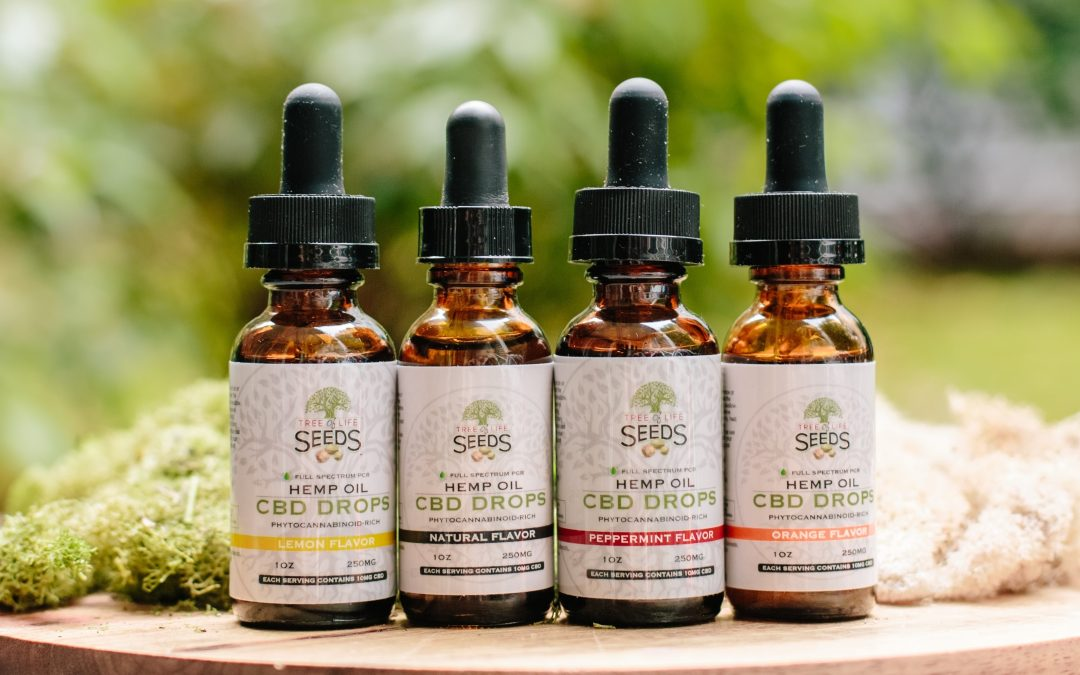 Where to Buy CBD Oil: A Retailer's Buying Guide